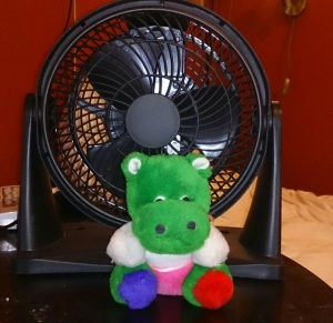 This is my most powerful fan!